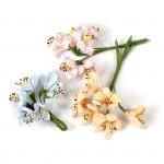 Цветы Creativ арт.50416 цв.пастельные цвета высота 10 см уп.18 шт в ассорт.
