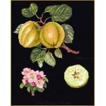 Набор для вышивания арт.Gouverneur-2057.05