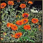 Набор для вышивания арт.Gouverneur-2062.05 Черная канва 47х45 см