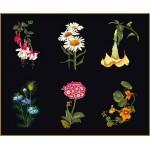 Набор для вышивания арт.Gouverneur-3084.05 17х20