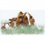 Набор для вышивания арт.Gouverneur-449 Корова и теленок 45х70 см