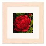 Набор для вышивания арт.LANARTE-144565А Пион 18,5х18,5 см