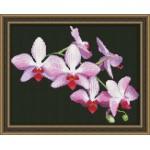 Набор для вышивания Юнона арт.0116 Ветка орхидеи 22,5х17,5см