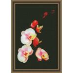 Набор для вышивания Юнона арт.0118 Розовая орхидея 20х31см
