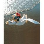WIT.A25600 Набор для изготовления вальдорфской куклы DE WITTE ENGEL Маленький Нильс на гусе 11*30см