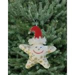 WIT.A59300 Набор для изготовления вальдорфской игрушки DE WITTE ENGEL Морская звезда (подвеска) 10*8,5см