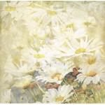 Бумага для скрапбукинга акварельные цветы арт.CP01319 ромашки 30х28,5см 160грм одностор