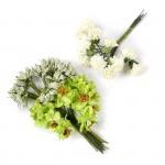 Цветы Creativ арт.50413 цв.лаймово-зеленый высота 10 см уп.35 шт в ассорт.