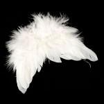 Крылья Ангела арт.КЛ.20705 10х14 см