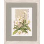 Набор для вышивания арт.LANARTE-145542 Натуральный белый цвет