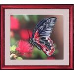 Набор для вышивания BUTTERFLY арт. 103 Бабочка 24х28см Б