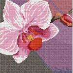 Набор для вышивания Орнамент арт. ВЦ-010 Пано Орхидея 1 20х20