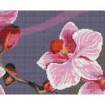 Набор для вышивания Орнамент арт. ВЦ-013 Пано Орхидея 4 24х19